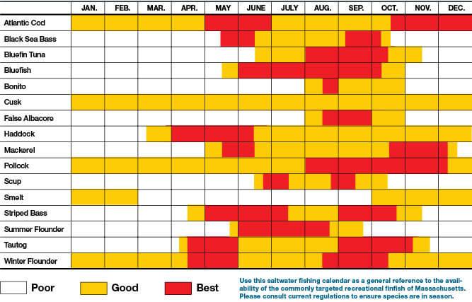Saltwater Fish Availability Calendar Massachusetts Saltwater Fishing Regulations 2020 Eregulations