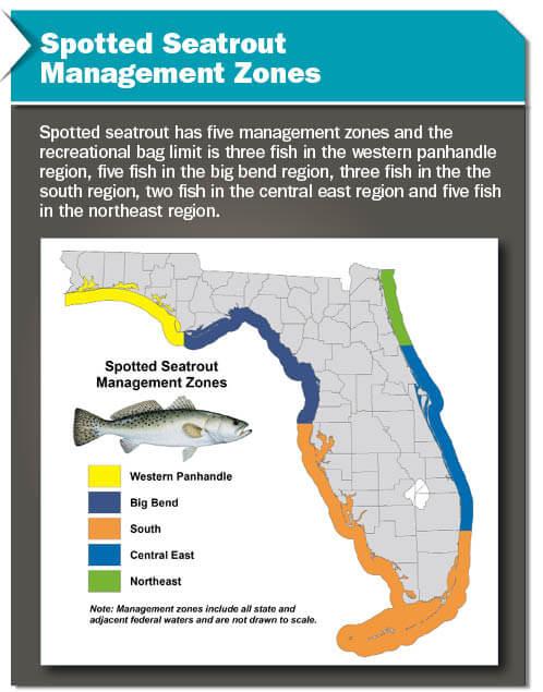 Management Zones Florida Saltwater Fishing Regulations 2020 Eregulations