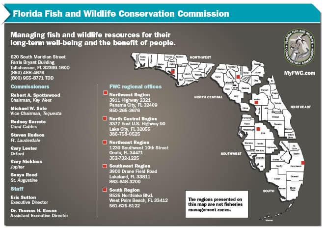 Fish Wildlife Conservation Commission Florida Saltwater Fishing Regulations 2020 Eregulations