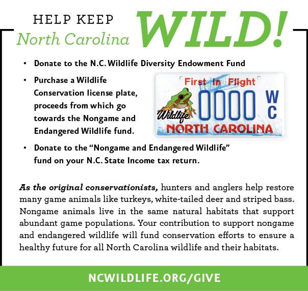 Nongame Regulations North Carolina Hunting Fishing Regulations 2020 Eregulations