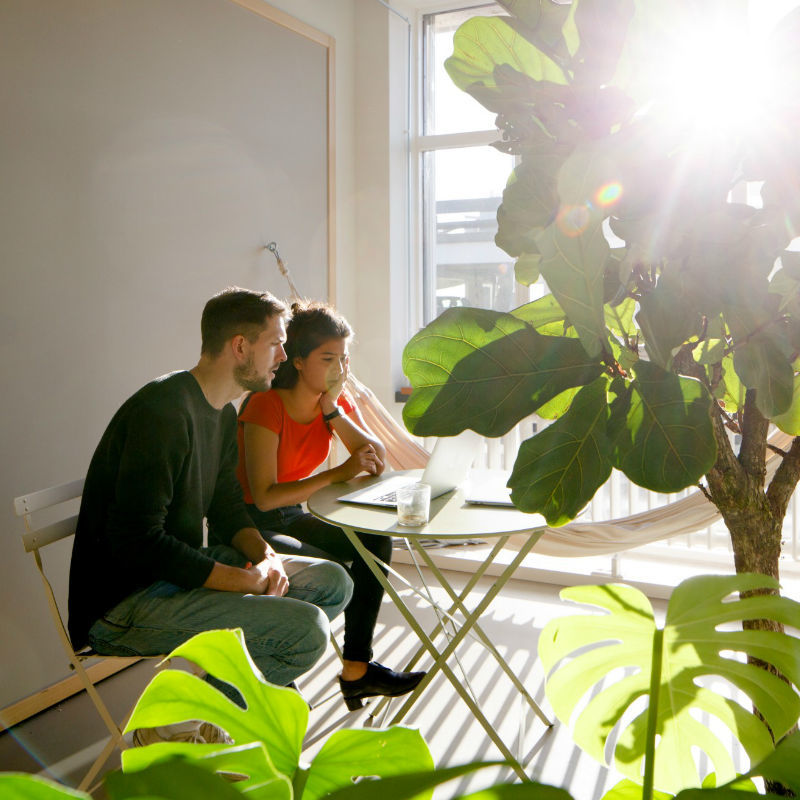 TNW Spaces coworking shared space greenery