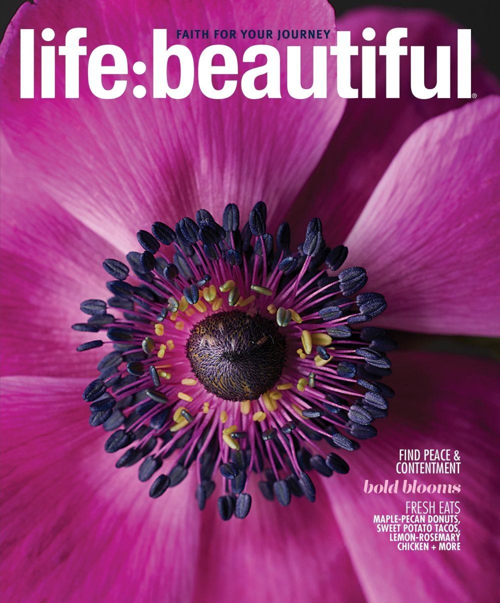 Life:Beautiful Magazine Fall 2018 cover