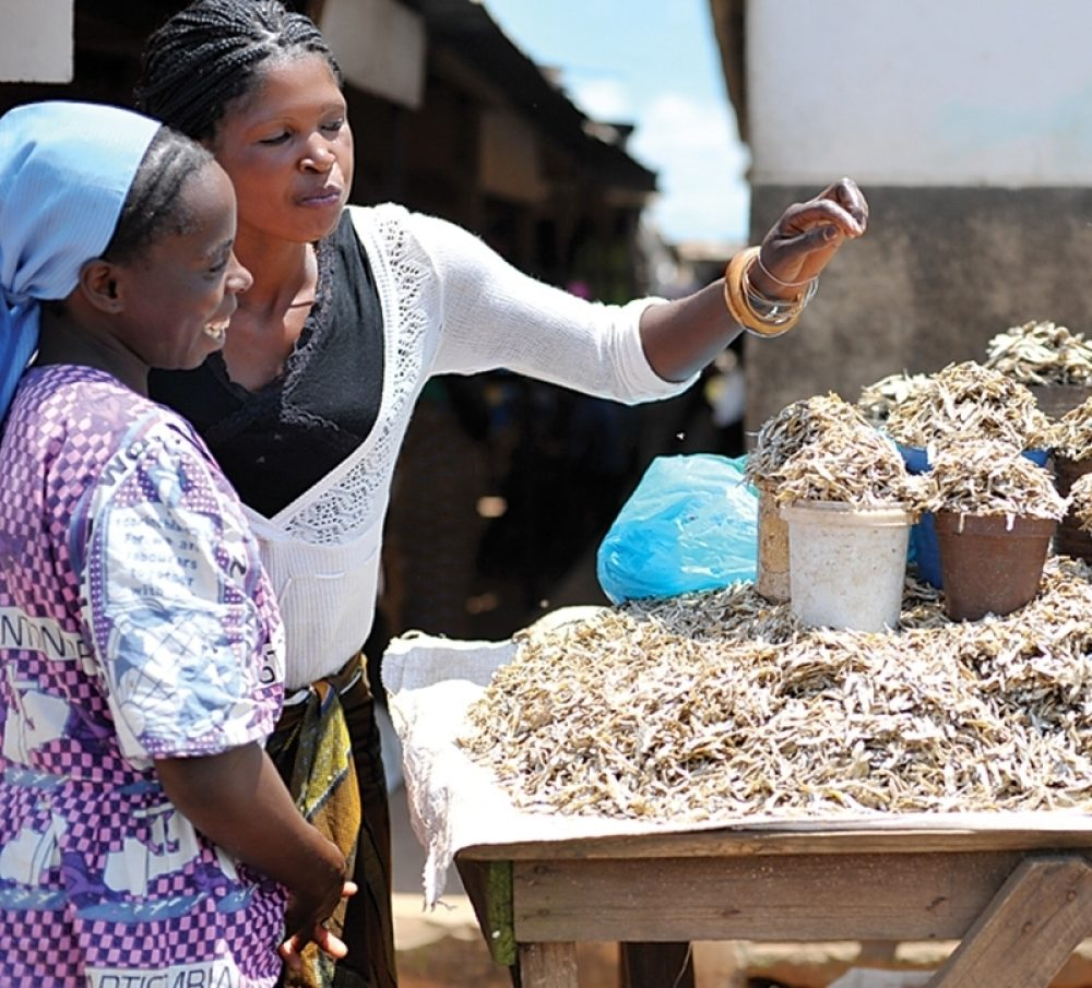 Zambian women look at containers of fish.