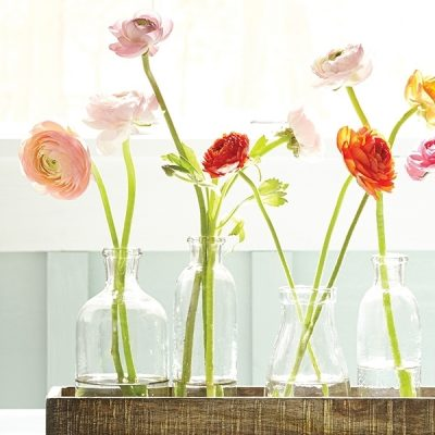 Small glass jars hold pairs of ranunculus