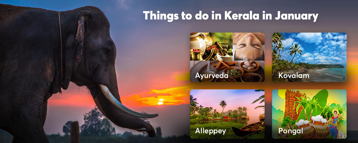 10 best places for exciting things to do in Kerala in January