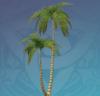 Silversand Coconut Tree