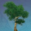 Green Irontrunk Tree