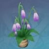Sandbank Lotus Pearbell