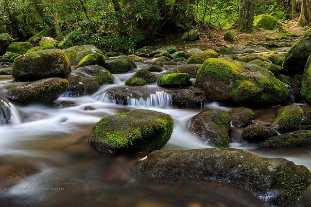 Camping stream great smoky mts vaibhav bohsale cc 2