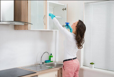 cleaning lady service