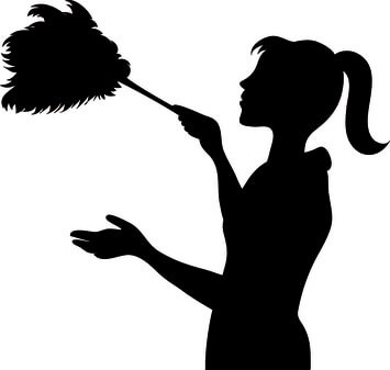 organic cleaning services