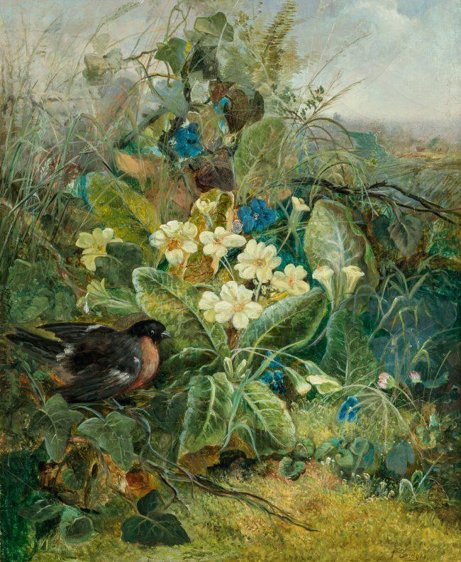 Rose Breasted Grosbeak in a Thicket by FIDELIA BRIDGES