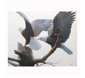 "Robert Bateman's ""Landings – Bald Eagles"" Limited Edition Canvas"