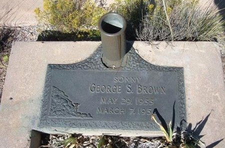 BROWN, GEORGE S - Apache County, Arizona | GEORGE S BROWN - Arizona Gravestone Photos