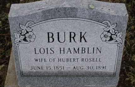 BURK, LOIS - Apache County, Arizona | LOIS BURK - Arizona Gravestone Photos