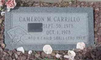 CARRILLO, DAMON M. - Apache County, Arizona | DAMON M. CARRILLO - Arizona Gravestone Photos