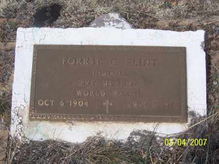 FLINT, FOREST G. - Apache County, Arizona | FOREST G. FLINT - Arizona Gravestone Photos