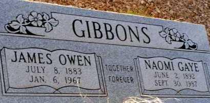 GIBBONS, JAMES OWEN - Apache County, Arizona | JAMES OWEN GIBBONS - Arizona Gravestone Photos