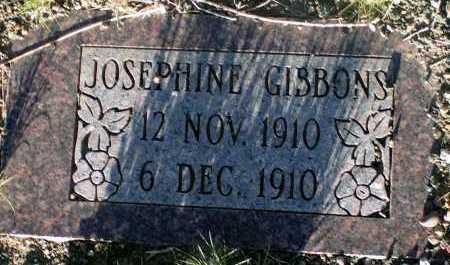 GIBBONS, JOSEPHINE - Apache County, Arizona   JOSEPHINE GIBBONS - Arizona Gravestone Photos