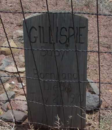 GILLISPIE, BABY - Apache County, Arizona | BABY GILLISPIE - Arizona Gravestone Photos