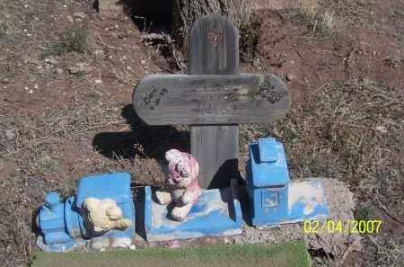 HIBBELL, CORI LEE - Apache County, Arizona | CORI LEE HIBBELL - Arizona Gravestone Photos