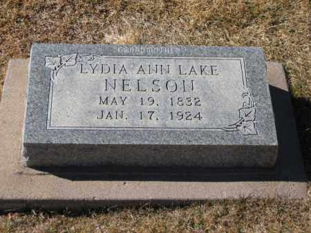 LAKE NELSON, LYDIA ANN - Apache County, Arizona | LYDIA ANN LAKE NELSON - Arizona Gravestone Photos