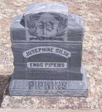 PIPKINS, JOSEPHINE - Apache County, Arizona | JOSEPHINE PIPKINS - Arizona Gravestone Photos