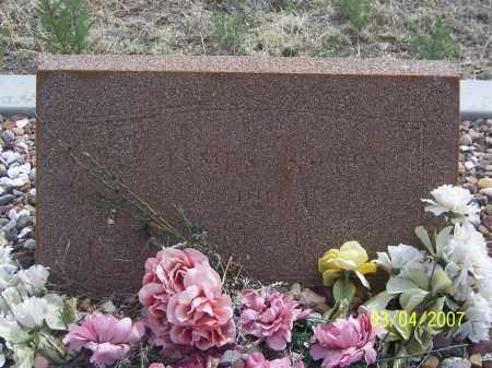 PUGH, JAMES - Apache County, Arizona | JAMES PUGH - Arizona Gravestone Photos