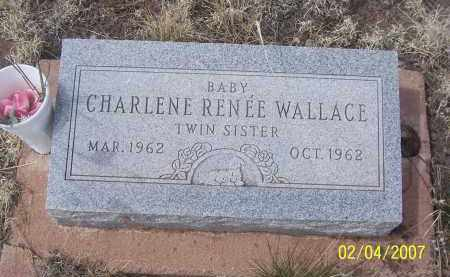 WALLACE, CHARLLENE RENEE - Apache County, Arizona | CHARLLENE RENEE WALLACE - Arizona Gravestone Photos