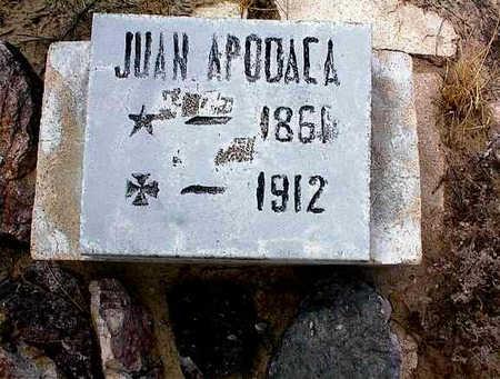 APODACA, JUAN - Cochise County, Arizona   JUAN APODACA - Arizona Gravestone Photos
