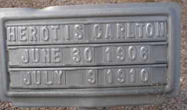CARLTON, HEROTIS - Cochise County, Arizona | HEROTIS CARLTON - Arizona Gravestone Photos