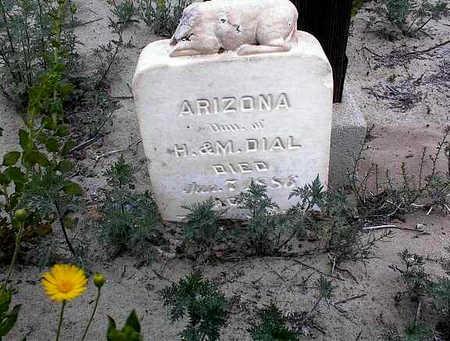 DIAL, ARIZONA - Cochise County, Arizona | ARIZONA DIAL - Arizona Gravestone Photos