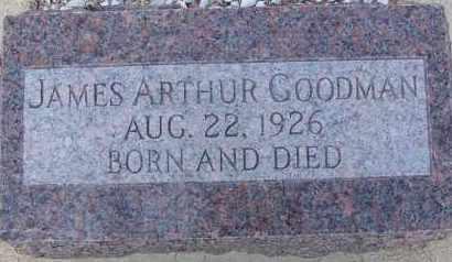 GOODMAN, JAMES ARTHUR - Cochise County, Arizona | JAMES ARTHUR GOODMAN - Arizona Gravestone Photos