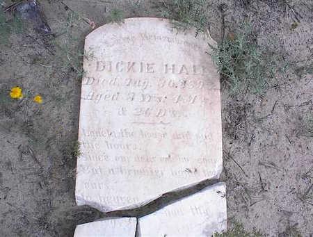 HALL, DICKIE - Cochise County, Arizona | DICKIE HALL - Arizona Gravestone Photos