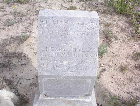 HALL, HENRY - Cochise County, Arizona | HENRY HALL - Arizona Gravestone Photos