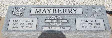 MAYBERRY, AMY - Cochise County, Arizona | AMY MAYBERRY - Arizona Gravestone Photos