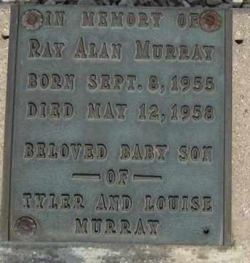 MURRAY, RAY ALAN - Cochise County, Arizona | RAY ALAN MURRAY - Arizona Gravestone Photos