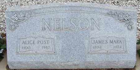 NELSON, JAMES MARK - Cochise County, Arizona | JAMES MARK NELSON - Arizona Gravestone Photos