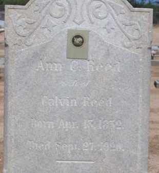 REED, ANN C. - Cochise County, Arizona | ANN C. REED - Arizona Gravestone Photos