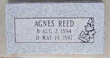 REED, AGNES - Cochise County, Arizona | AGNES REED - Arizona Gravestone Photos