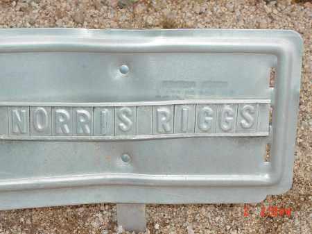 RIGGS, NORRIS - Cochise County, Arizona | NORRIS RIGGS - Arizona Gravestone Photos