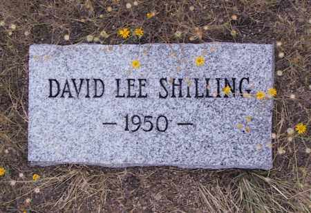 SHILLING, DAVID - Cochise County, Arizona | DAVID SHILLING - Arizona Gravestone Photos