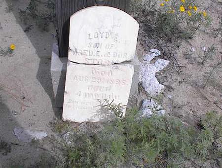 STORM, LOYD E. - Cochise County, Arizona   LOYD E. STORM - Arizona Gravestone Photos
