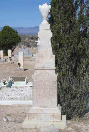 WILSON, GEORGE - Cochise County, Arizona | GEORGE WILSON - Arizona Gravestone Photos