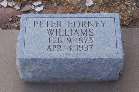 WILLIAMS, PETER FORNEY - Gila County, Arizona | PETER FORNEY WILLIAMS - Arizona Gravestone Photos