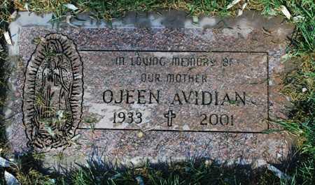 AVIDIAN, OJEEN - Maricopa County, Arizona   OJEEN AVIDIAN - Arizona Gravestone Photos