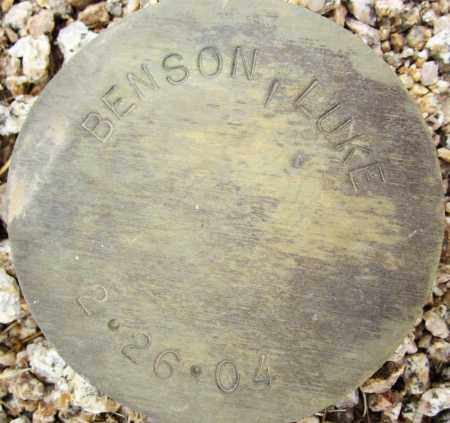 BENSON, LUKE - Maricopa County, Arizona | LUKE BENSON - Arizona Gravestone Photos