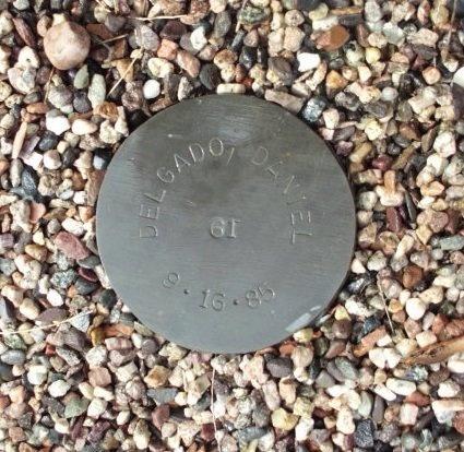 DELGADO, DANIEL - Maricopa County, Arizona | DANIEL DELGADO - Arizona Gravestone Photos