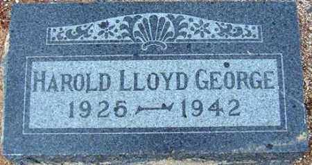GEORGE, HAROLD LLOYD - Maricopa County, Arizona | HAROLD LLOYD GEORGE - Arizona Gravestone Photos