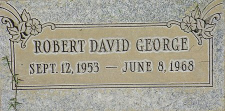 GEORGE, ROBERT DAVID - Maricopa County, Arizona | ROBERT DAVID GEORGE - Arizona Gravestone Photos